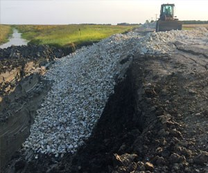 Flood Protection, Riverbank and Shoreline Restoration